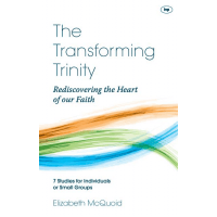 TRANSFORMING TRINITY (THE) - REDISCOVERING THE HEART OF OUR FAITH