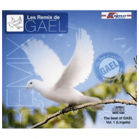 THE BEST OF GAEL VOL.1 (GROUPE ADORONS L'ÉTERNEL) [CD 2011] - LINGALA